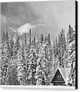 Taking Refuge - Grand Teton Canvas Print by Sandra Bronstein