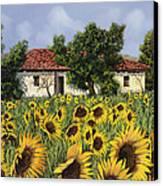 Tanti Girasoli Davanti Canvas Print by Guido Borelli