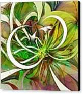 Tendrils 15 Canvas Print by Amanda Moore