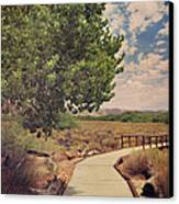 That Helping Hand Canvas Print by Laurie Search