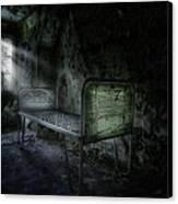 The Asylum Project - Seven Canvas Print by Erik Brede