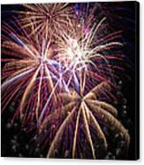 The Beauty Of Fireworks Canvas Print by Garry Gay
