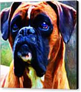 The Boxer - Painterly Canvas Print by Wingsdomain Art and Photography