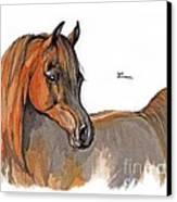 The Chestnut Arabian Horse 2a Canvas Print by Angel  Tarantella
