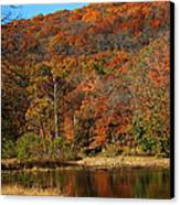 The Color Of Fall Canvas Print by Billy Beasley