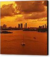 The Color Of Passion Canvas Print by Michael Guirguis