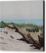 The Drifter Canvas Print by Dana Schmidt