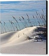 The Dunes Of Destin Canvas Print by JC Findley