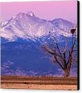 The Eagles And The Peaks Canvas Print by Bryce Bradford