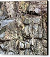 The Face In The Rock Canvas Print by JC Findley