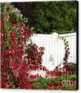 The Forgotten Gate Canvas Print by Olivier Le Queinec