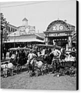 The Goat Carriages Coney Island 1900 Canvas Print by Steve K