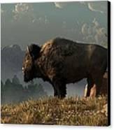 The Great American Bison Canvas Print by Daniel Eskridge