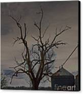 The Haunting Tree Canvas Print by Alys Caviness-Gober