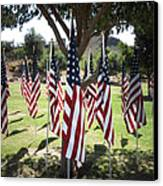 The Healing Field Canvas Print by Laurel Powell