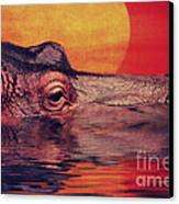The Hippo Canvas Print by Angela Doelling AD DESIGN Photo and PhotoArt