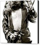 The Lion  Robert Plant Canvas Print by Iconic Images Art Gallery David Pucciarelli