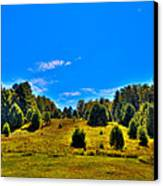 The Old Maple Ridge Ski Area - Old Forge Ny Canvas Print by David Patterson