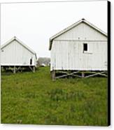 The Old Pierce Point Ranch At Foggy Point Reyes California 5d28140 Canvas Print by Wingsdomain Art and Photography
