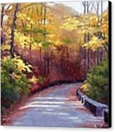 The Old Roadway In Autumn II Canvas Print by Janet King