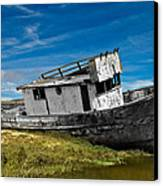 The Pt. Reyes Muted Canvas Print by Bill Gallagher