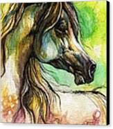 The Rainbow Colored Arabian Horse Canvas Print by Angel  Tarantella