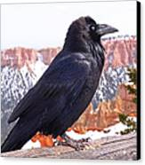 The Raven Canvas Print by Rona Black
