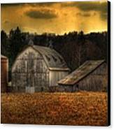 The Rose Farm Canvas Print by Thomas Young