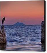 The Sentinels  Canvas Print by Peter Tellone