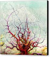 The Tree That Want Canvas Print by Bjorn Eek