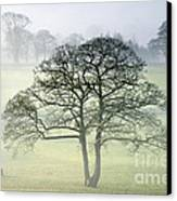 The Vale Of York From Crayke Canvas Print by John Potter