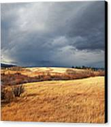 The View From The Side Of The Road Canvas Print by Theresa Tahara