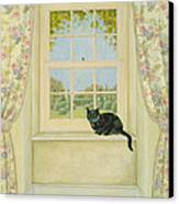 The Window Cat Canvas Print by Ditz