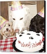 They Are Eating My Cake Canvas Print by Jan Tyler