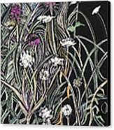 Thistle And Queen Anne Canvas Print by Grace Keown
