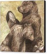 Three Bears Canvas Print by Meagan  Visser