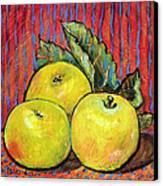 Three Yellow Apples Canvas Print by Blenda Studio