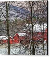 Through The Trees Canvas Print by Stephanie Calhoun