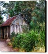 Timber Shack Canvas Print by Kaye Menner