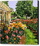 Tournament Of Roses II Canvas Print by David Lloyd Glover