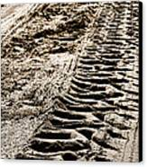 Tractor Tracks In Dry Mud Canvas Print by Olivier Le Queinec