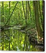 Tranquility In The Forest Canvas Print by Adam Jewell