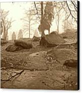 Tree And Steps At Devils Den - Gettysburg Canvas Print by Jan W Faul