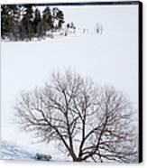 Tree And The Point In Winter Canvas Print by Rob Huntley