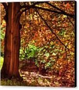 Tree In The Park. De Haar Castle. Utrecht  Canvas Print by Jenny Rainbow