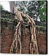 Tree Roots On Ruins At Angkor Wat Canvas Print by Sami Sarkis
