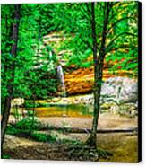 Tree Roots Canvas Print by Optical Playground By MP Ray