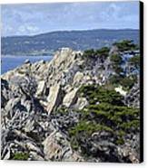 Trees Amidst The Cliffs In California's Point Lobos State Natural Reserve Canvas Print by Bruce Gourley