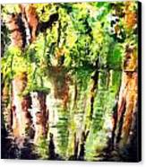 Trees Canvas Print by Daniel Janda