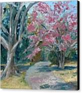 Trees Of Windermere Canvas Print by Susan E Jones